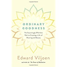 ordinary goodness - book